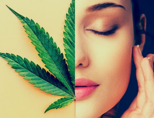 CBD Oil Beauty Products: Our favorite picks