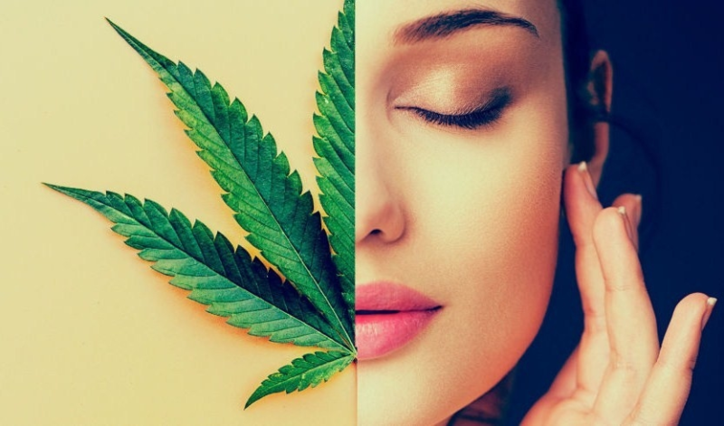 cbd oil beauty products
