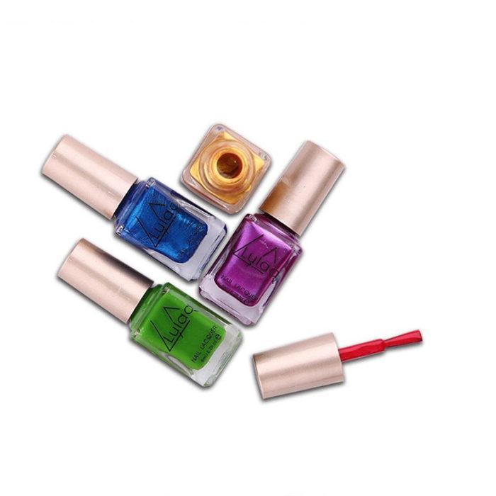 Nail Printed Polish Set Nail Stamp Plate Nail Lacquer Kit Colorful Nail Plate Printing Nail Art